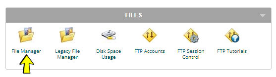Cpanel File Section